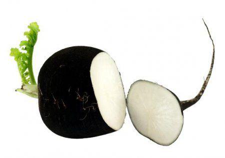 7 полезных свойств черной редьки