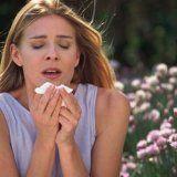 Аллергическая реакция организма человека
