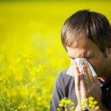 Аллергическая реакция весной у человека