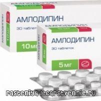 Амлодипин – применение, инструкция, показания, аналоги, побочные действия