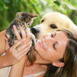 Анималотерапия лечение с помощью животных
