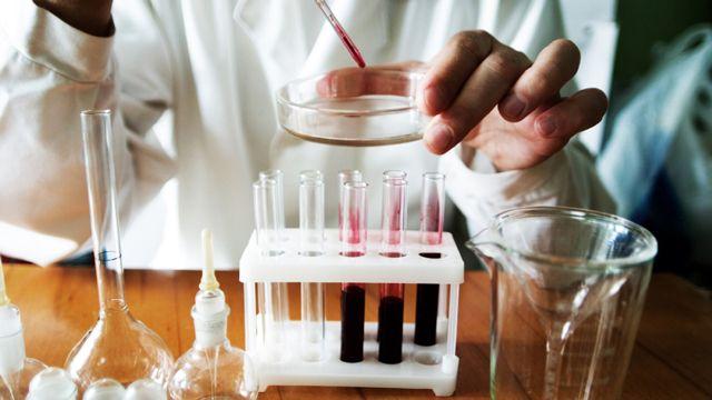 Что такое базофилы в анализе крови и какова их норма в организме