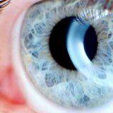 Болезни глаз и острая глаукома