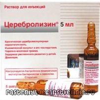 Церебролизин – применение, инструкция, показания, аналоги, дозировка