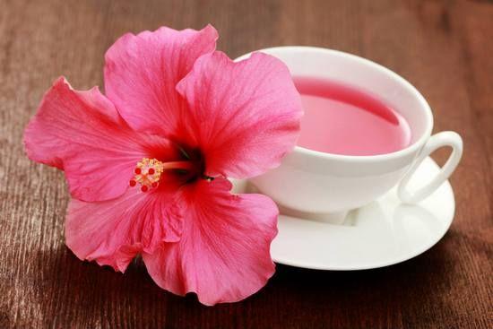 Чай каркаде: польза и вред для женщин и мужчин. Отзывы об употреблении красного чая из суданской розы