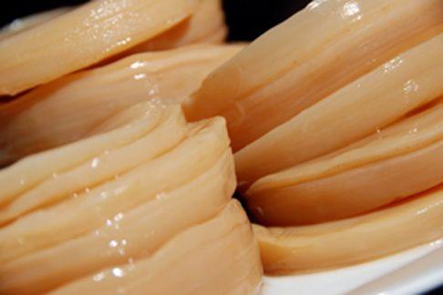 Чайный гриб: полезные свойства