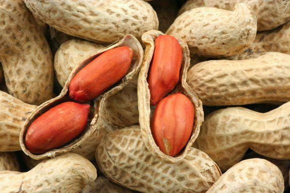 Чем полезен арахис? Полезные свойства арахиса