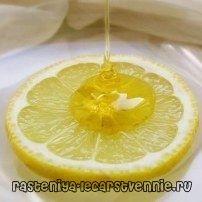 Чем полезен лимон с медом?