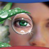 Чему отдать предпочтение очкам или контактным линзам
