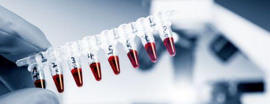 Фермент гамма-глутамилтранспептидаза вырабатывается человеческим организмо