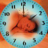 Факторы и принципы быстрого сна
