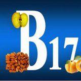 Функции витамина В17 в организме человека