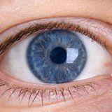 Глазные болезни инфекционные заболевания глаз