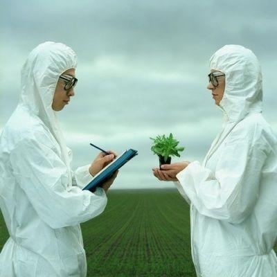 GMO: Lista najbardziej niebezpiecznych produktów i firm