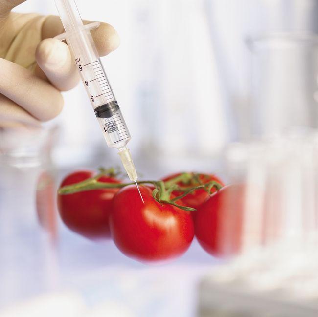 ГМО: список самых опасных продуктов и компаний