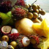 Экзотические фрукты для здоровья человека