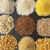 Jakie zbóż jest dobra dla zdrowia ludzkiego