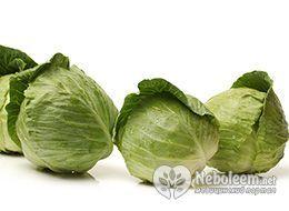 Калорийность капусты