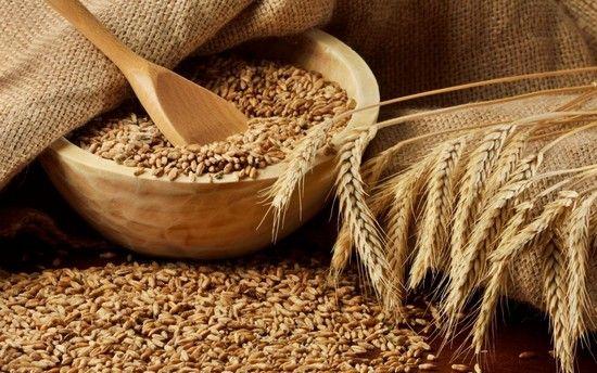 Каша пшеничная: польза и вред, калорийность, приготовление