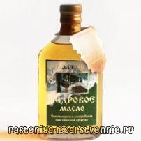 Кедровое масло - полезные свойства, применение