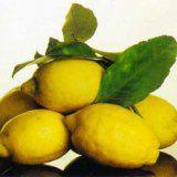 Лечение сердечнососудистых заболеваний лимоном