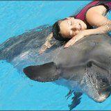Метод лечения заболеваний дельфинотерапией