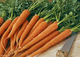 Морковь может защитить от рака груди