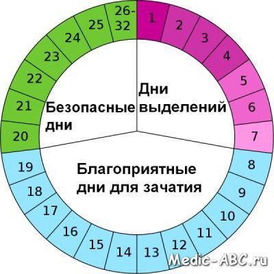 Можно ли забеременеть на двенадцатый день цикла