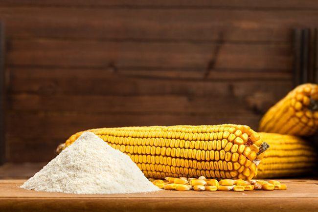 Мука кукурузная: польза и вред. Что такое модифицированная мука?