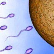 Мужское бесплодие: причины, диагностика, лечение, формы бесплодия мужчин