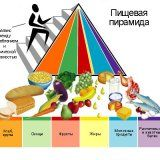 Пирамида здорового питания для всех возрастов
