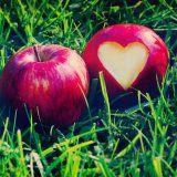 Питание человека и сердечнососудистые заболевания