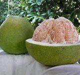 Полезные свойства фрукта помело