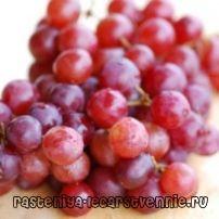 Полезные свойства красного винограда