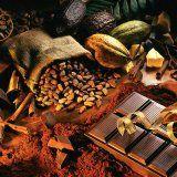 Польза и вред какао для организма