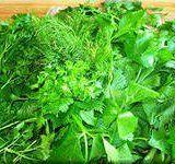 Польза свежей зелени для человека