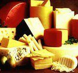 Польза сыра для здоровья и красоты