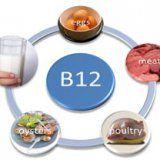 Польза витамина В12 для организма человека