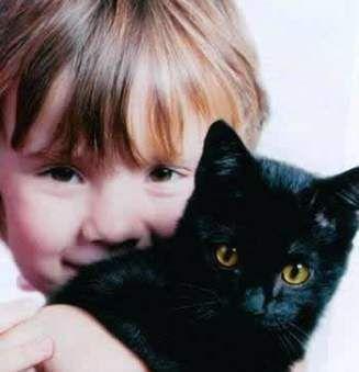 Предостерегаем ребенка от животного мира