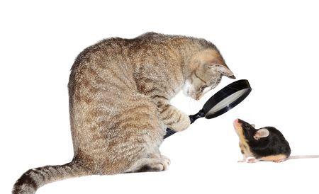 Причины почему резко упало зрение: что делать?