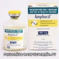 Противогрибковые антибиотики: лечение системных микозов Амфоцил