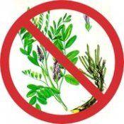 Противопоказания лекарственных растений