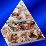 Рациональное питание и его значение для здоровья человека