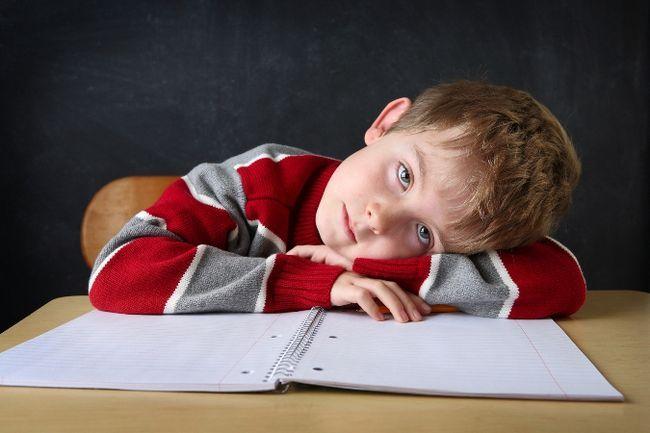 Ребенок не хочет учиться: есть ли выход? Почему ребенок не хочет учиться: возможные причины