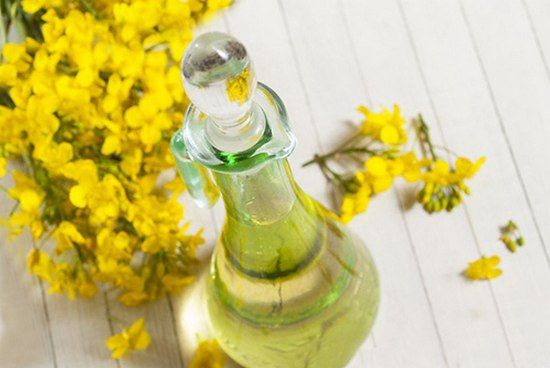 Рыжиковое масло: польза и вред, особенности применения
