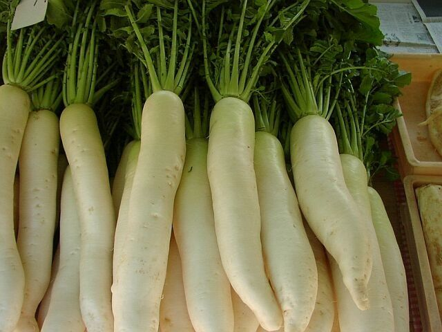 Салат из редьки дайкон: рецепты. Польза дайкона
