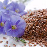 Семя льна для очищения кишечника