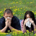 Siano gorączka leczenie kataru siennego