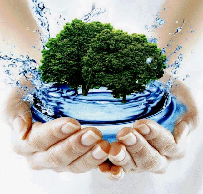 Сколько надо пить воды в день? Сколько пить воды, чтобы похудеть?