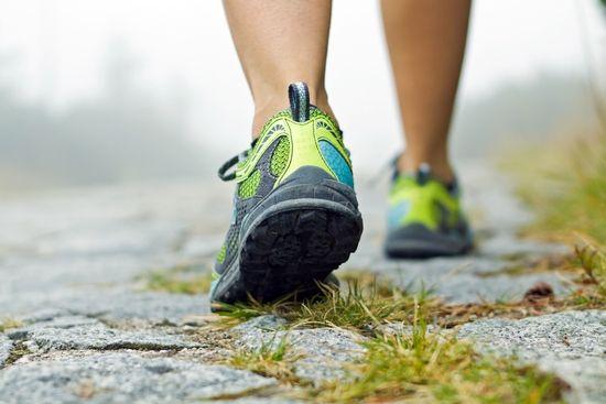 Сколько сжигается калорий при ходьбе: уровень энергозатрат и способы их увеличить